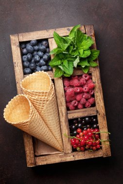 Ice cream with berries ingredients. Top view