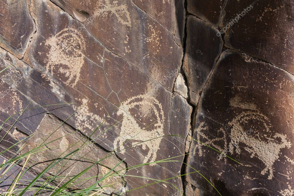 Domkhar rock art sanctuary in Domkhar village in Ladakh, banks of Indus river.