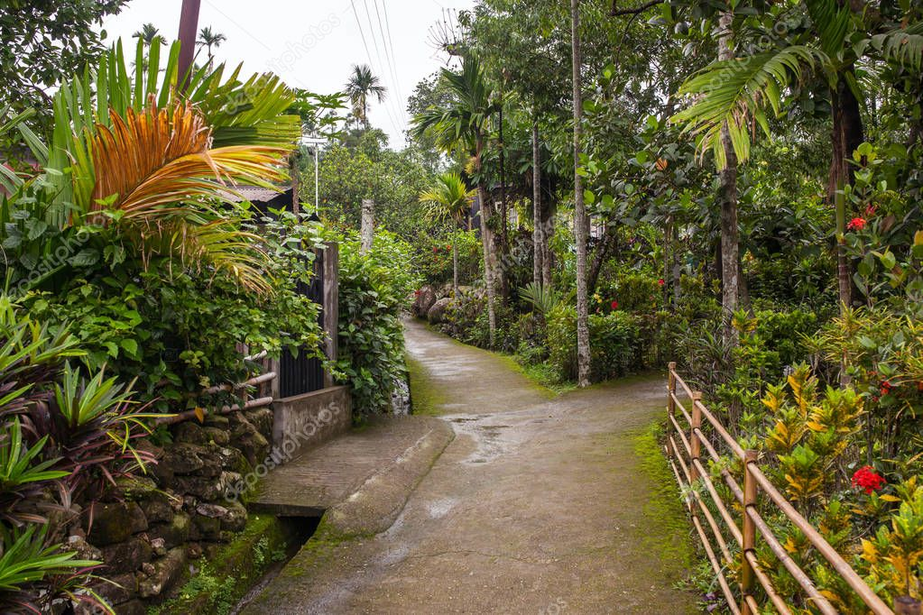 Clean pathway in Mawlynnong village, Meghalaya, North East India. It was declared as the cleanest village in India.