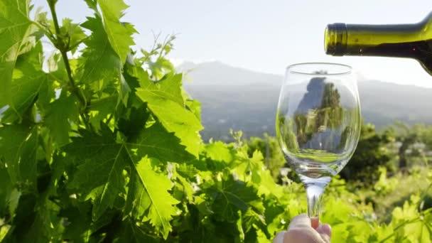 Sommelier nalévá červené víno ve sklenici na sicilské vinice
