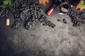 Víno s hrozny, listí a zátky na tmavém pozadí, copyspace, ploché lay