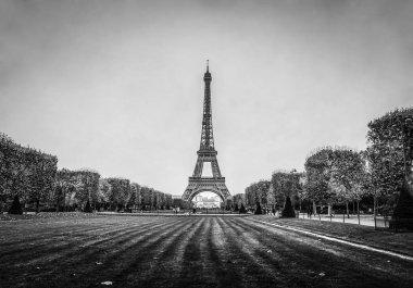 Eiffel tower in Paris at rainy autumn evening. Black-white photo.