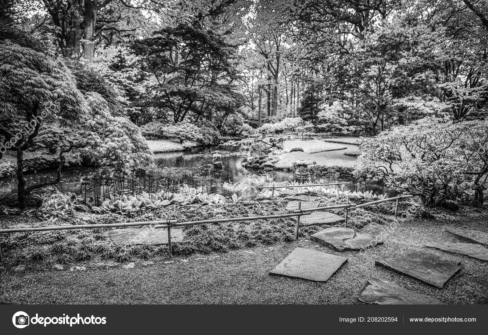 Traditional japanese garden black white photo stock photo