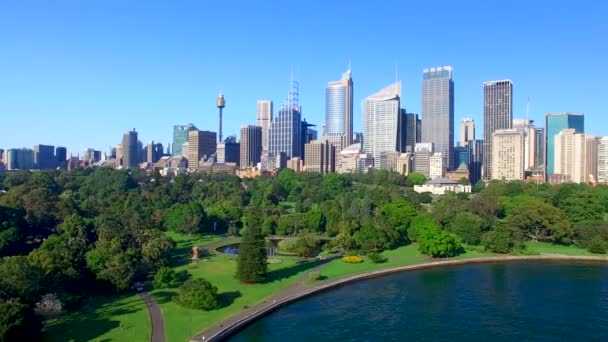 aerial view of Sydney bay buildings and park on a sunny day, Australia, video