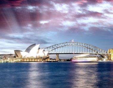 Beautiful sunset over Sydney skyline, Australia.