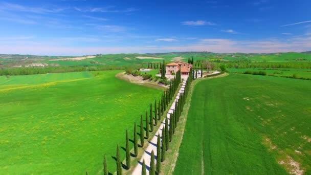 Luftaufnahme der schönen Zypressenstraße in der Toskana im Frühling