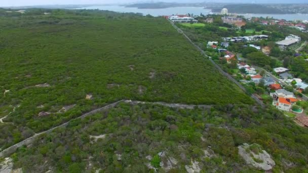 Beautiful aerial view of Shelly Beach coastline, Australia, video