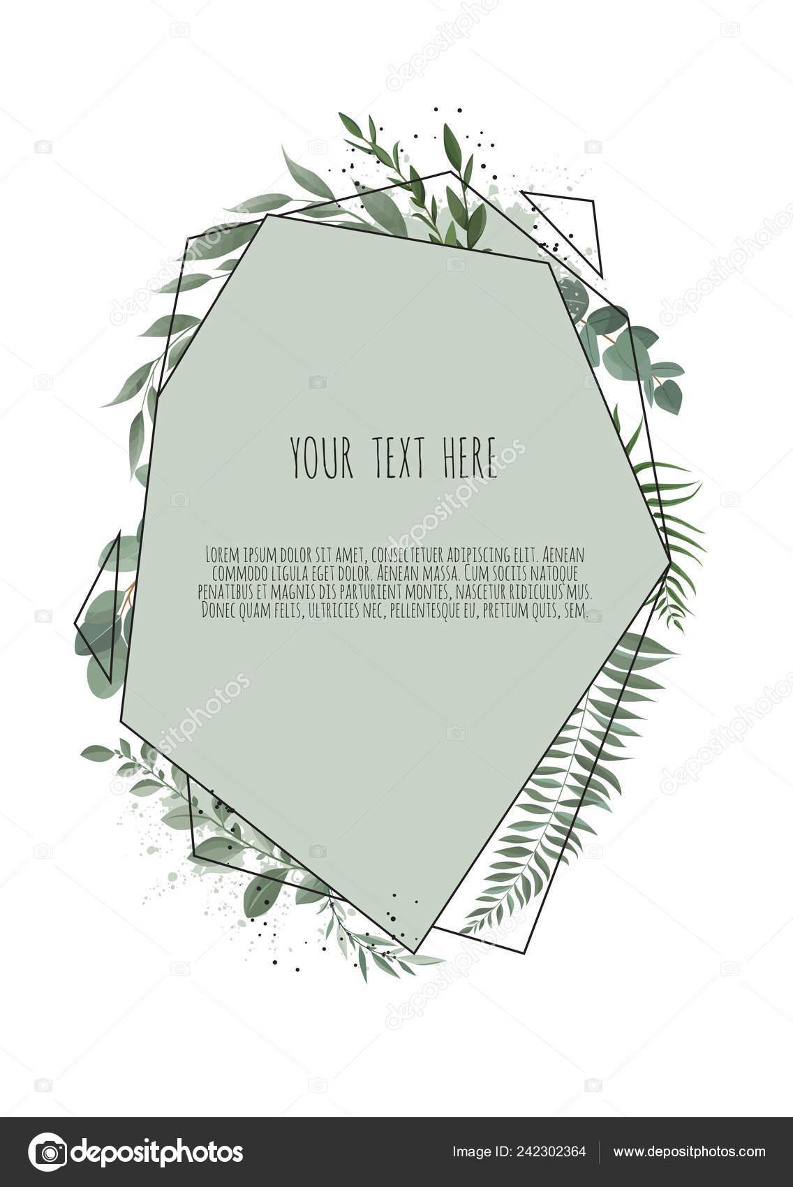 eukalyptus silberdollar gr ne zweige bl tter laub grenze. Black Bedroom Furniture Sets. Home Design Ideas