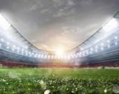 Fotografie Střed hřiště travnaté fotbalové hřiště stadion s reflektory