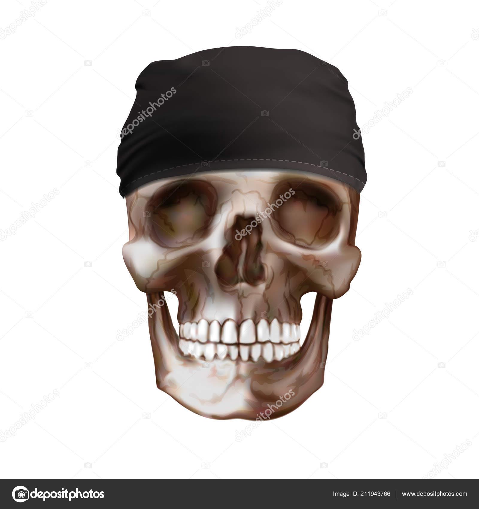 Vector Black Bandana Buff Skull — Stock Vector © urfingus  211943766 f4d81ebd865