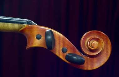 violin neck on dark curtains background.