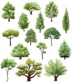 různé druhy stromů na bílém. ručně kreslená ilustrace