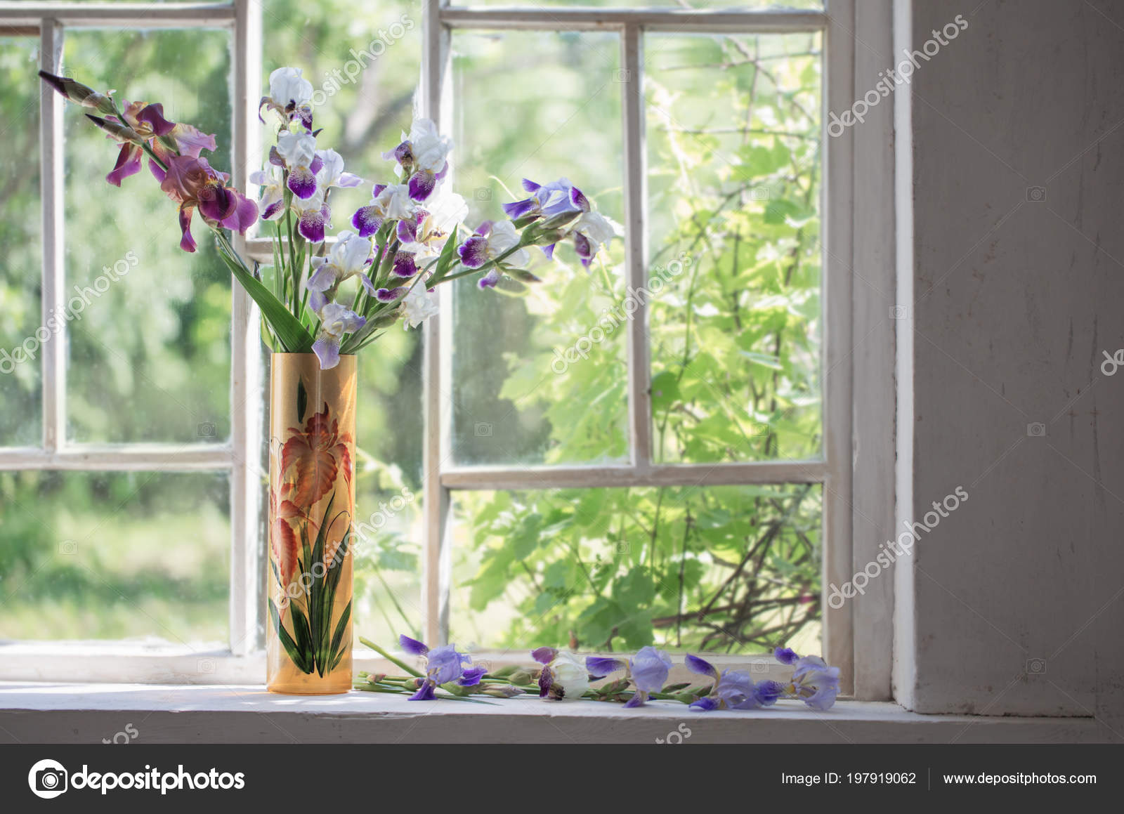 Old Windows and Flowers 7x5ft Shabby Countyard Backdrop Blooming Flowers Green Plants Vintage Wood Window Blue Board Rustic Concrete Wallpaper Spring Photography Background