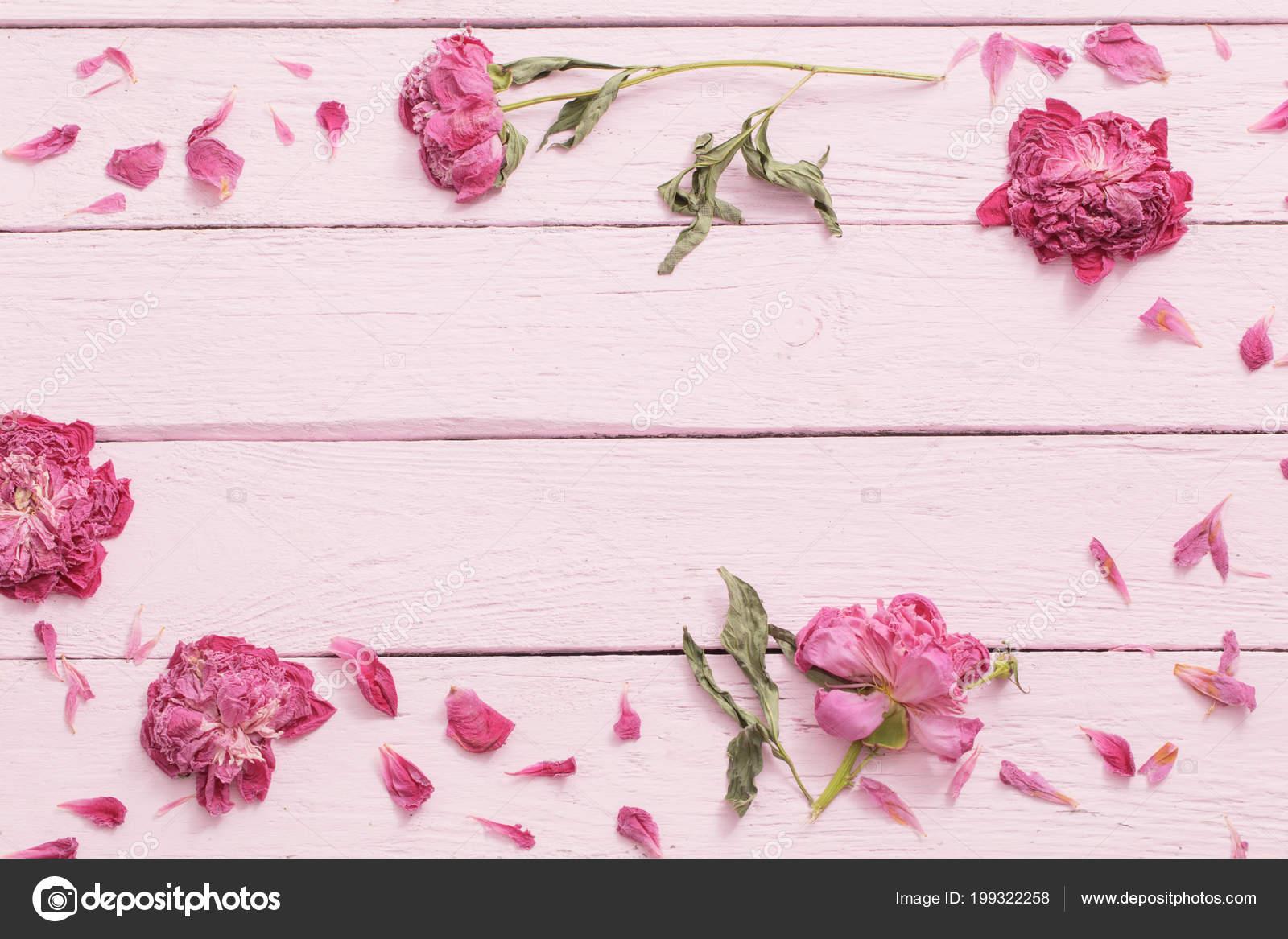 Dried Flowers Pink Wooden Background Stock Photo Kruchenkova