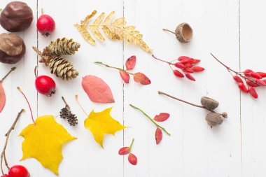 Red berriaes and  autumn leaves on white wooden background stock vector