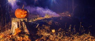 halloween pumpkin in night forest