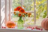 Fotografie orange flowers and pumpkins on windowsill