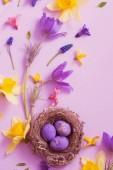 velikonoční vejce v hnízdě s jarní květy