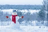 hóember a vörös sálat erdőben