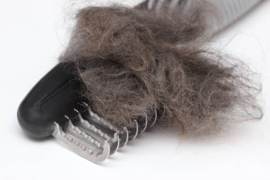 Matted wool trimmer tool for cat grooming. Closeup with clipped fur