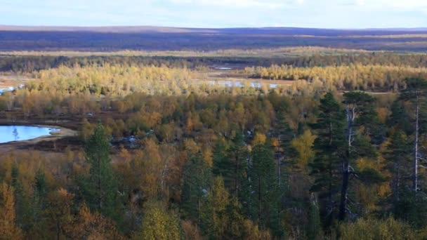 Panorama autumn Northern boreal forests