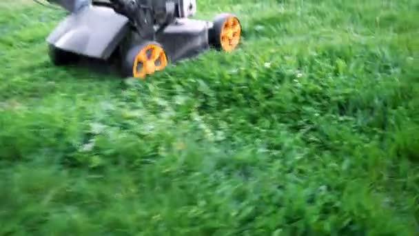 Lawn mower cutting green grass in backyard. Gardening background.