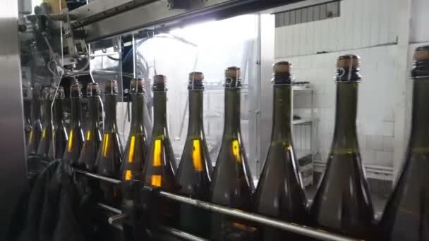 die Linie zum Befüllen und Verschließen des Förderers in einer Champagnerfabrik