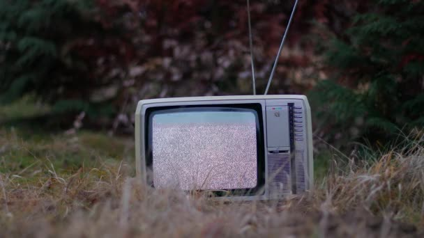 TV nincs jel a fűben