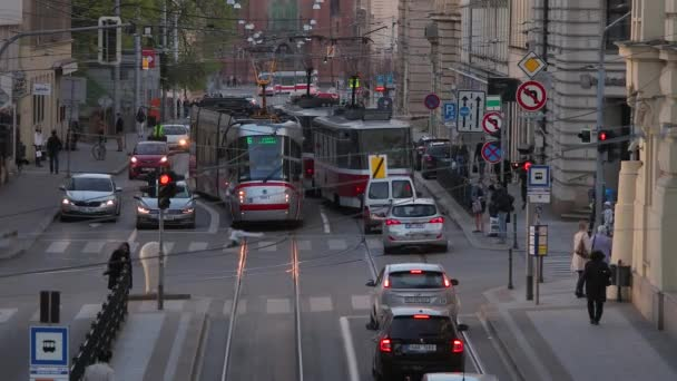 Trams on the street