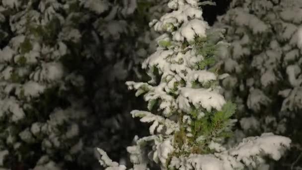Esik a hó éjszaka