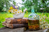Mortar of  healing herbs, bottle of healthy essential oil or infusion, old books and bunch of chamomile plant. Herbal medicine.