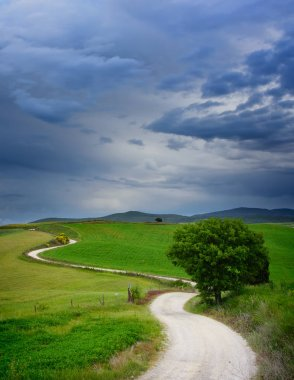 A winding strada bianca dirt road with many curves through the green fields in a landscape in Tuscany with a tree along the path and beautiful clouds in the sky leading to a destination in the distance in Italy. stock vector
