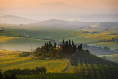 Famous house il Belvedere surrounded by cypress trees in the morning fog between the gentle hills of Val Orcia valley at sunrise in San Quirico Orcia in Tuscany, Italy. stock vector
