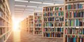 Knihovna. Police s knihami a učebnicemi. Koncept učení a vzdělávání. 3D ilustrace