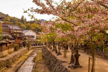 """Картина, постер, плакат, фотообои """"канал весной на острове миядзима, япония постеры печать картины фото фотографии"""", артикул 404487282"""