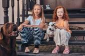 zwei Schwestern sitzen mit ihren Hunden auf der Treppe in einem Hof.