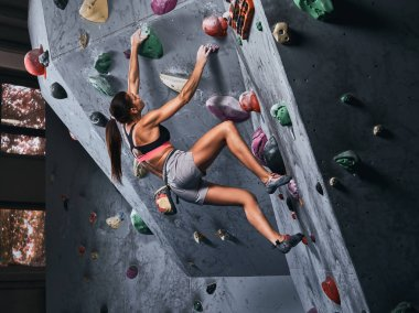 Professional female climber hanging on bouldering wall, practice climbing indoors. stock vector