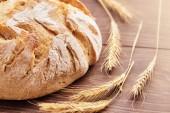 Čerstvě upečený chléb a klásky pšenice