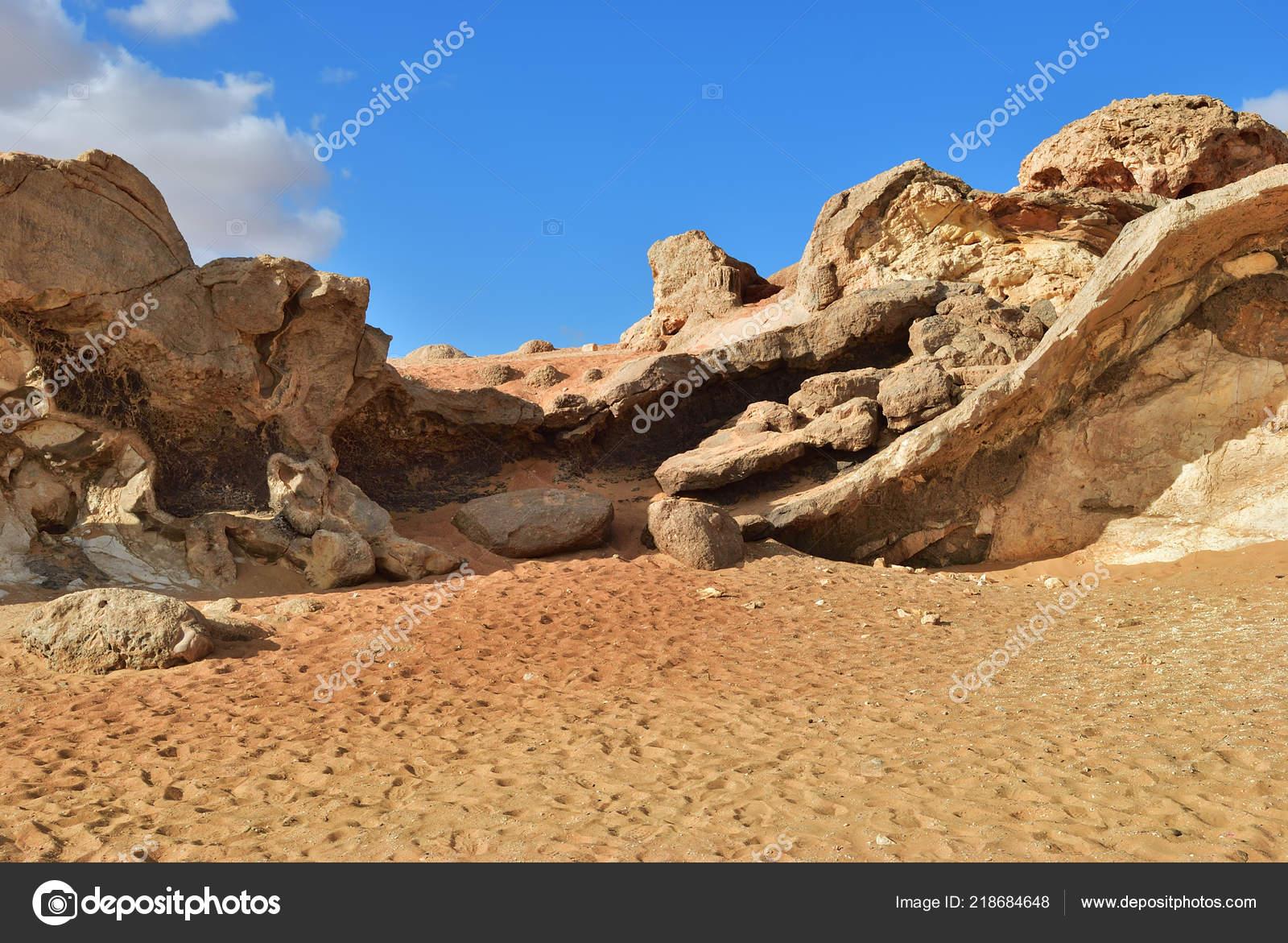 ελεύθερη έρημος Ωραία νεαρά γυμνά κορίτσια