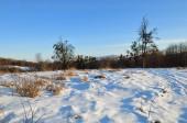 Karačajevsko-Čerkesko. Rusko. Atmosférické krajina pohoří Kavkaz na zimní svítání