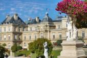 sochy s květinami a palác Lucemburského, Paříž, Francie
