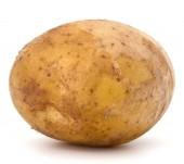 nové hlízy bramboru izolovaných na bílém pozadí výřez