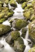 Flowes movimento di cascata, Nenderoth, Hessen, Germania