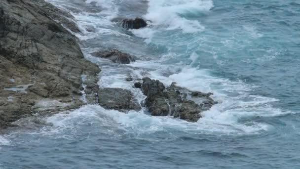 Vlny pobřeží Indického oceánu
