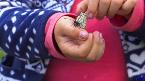 Pillangó ül a gyermek tenyér