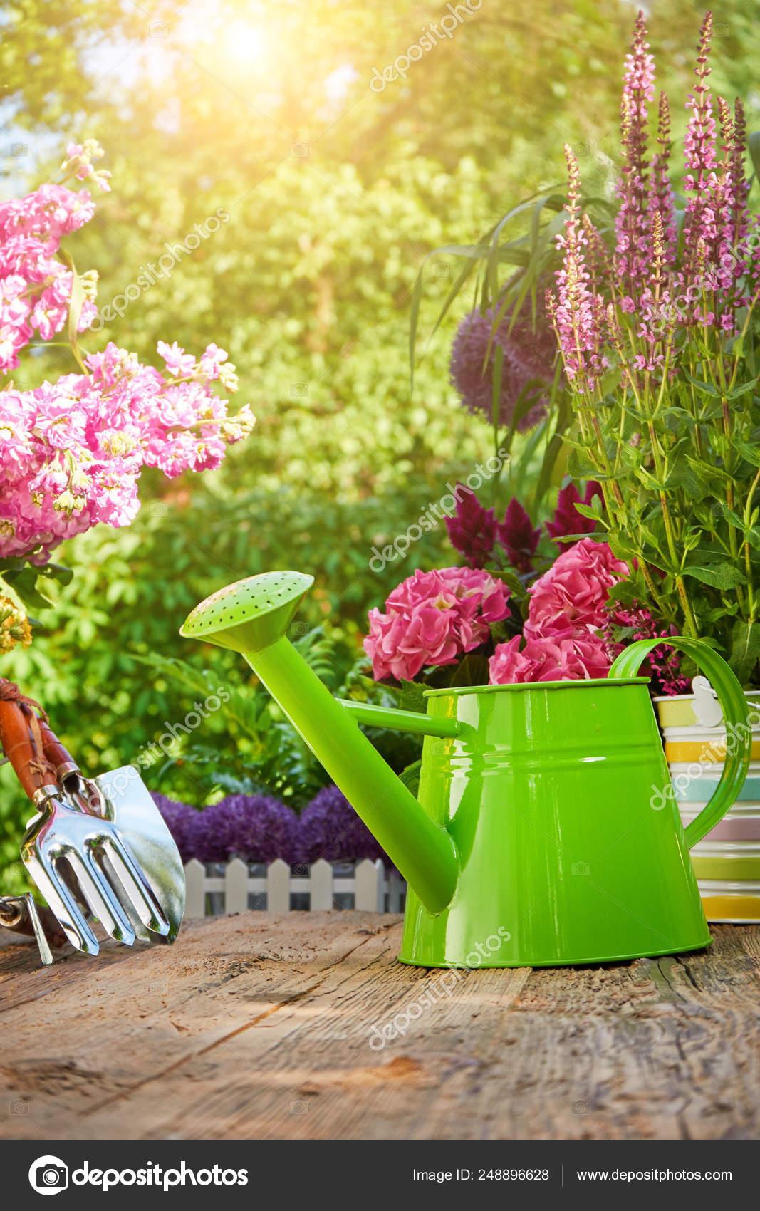 Herramientas Jardinería Flores Terraza Jardín Foto De