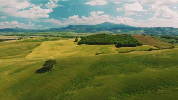 Luftbild in einer atemberaubenden Weinberglandschaft, mit Drohne, über Weinbergen an einem schönen Tag.