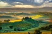 Nádherná zeleň v krajině a se světlem malované.