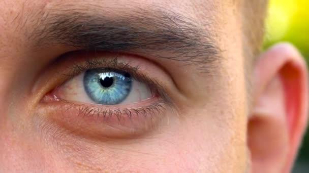schöne blinkende männliche Augen Nahaufnahme