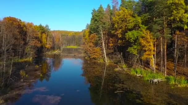 Letecký pohled na rybník a světlé podzimní les na břehu. Les se odráží na hladině rybníka